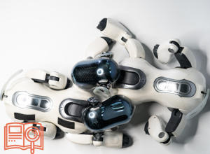 RLL – Robot Learning Lab